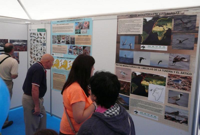 Exposiciones en Feria Bitacora Avilés 02.08.15. (1)