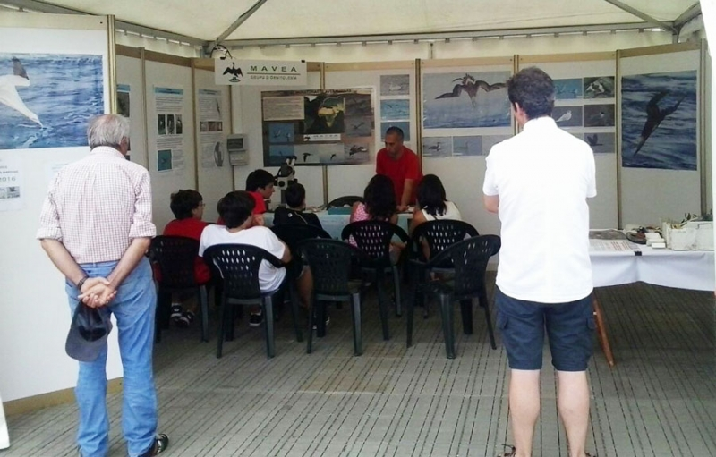 Taller de conchas en stand en feria Bitacora Aviles 06.08.15